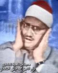 محمد صديق المنشاوي0