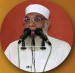 شوقي عبد الصادق عبد الحميد